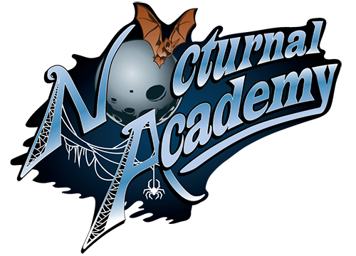 Image of: Security Camera The Metal Observer Nocturnal Academy